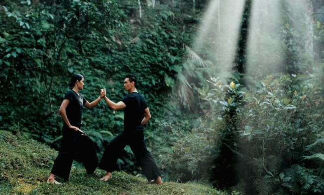 The Healing Power of Tai Chi