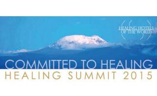 Healing Summit 2015