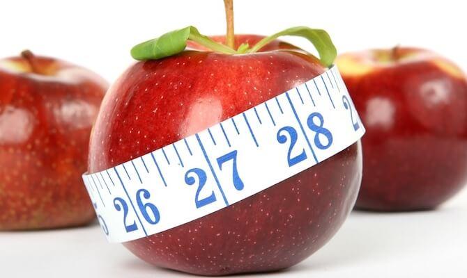 An Ayurvedic View on Obesity
