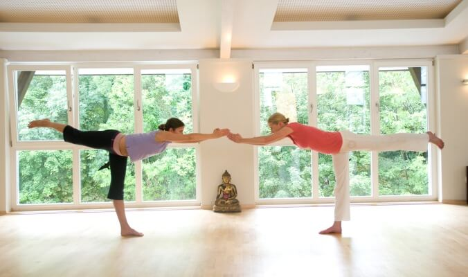 What is Yoga Assist?