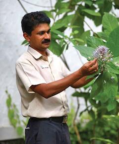 Dr. Arun Aravind