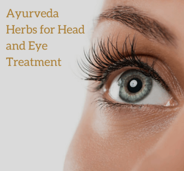 Ayurveda Herbs for Head and Eye Treatment