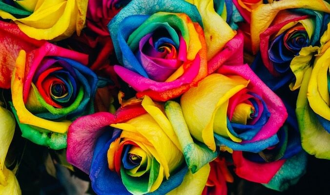 My Musings on a Rainbow Life