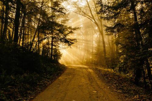 journey to find your spiritual teacher