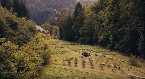 Julisis Farm