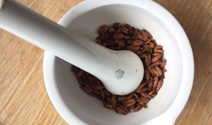 DIY Anti-Inflammatory Poplar Bud Balm